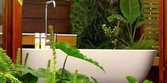 Кустовые цветы в ванной комнате
