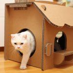 Фото 59: Домик для кошки из картона