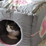 Фото 60: Мягкий домик для кошки