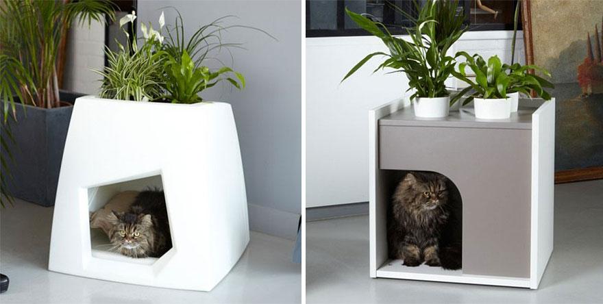 Домики - кашпо для кошек