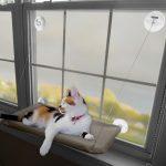 Фото 84: Подвесная лежанка для кошки
