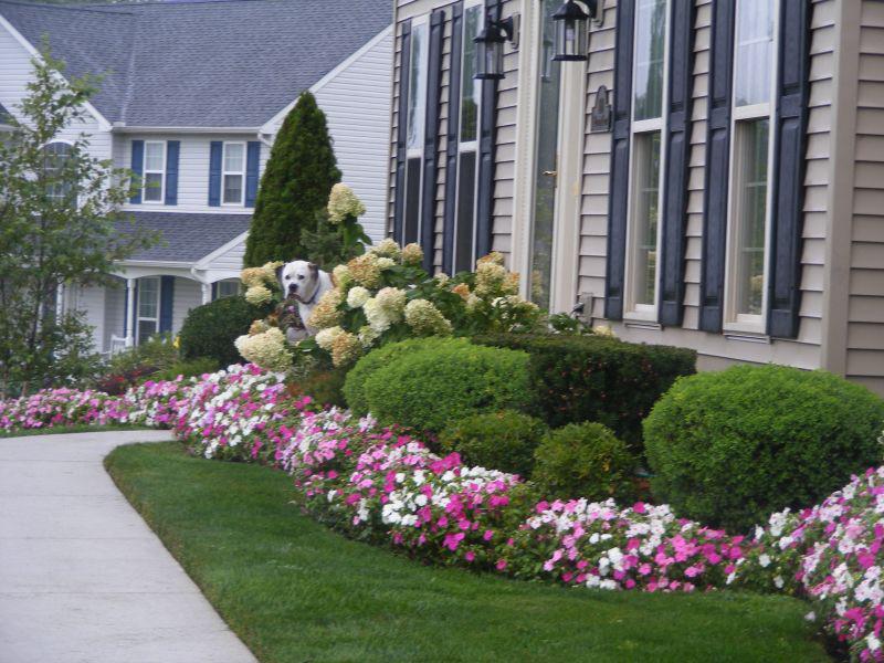 Ландшафтный дизайн перед домом