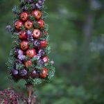 Фото 28: Топиарий из фруктов и ели