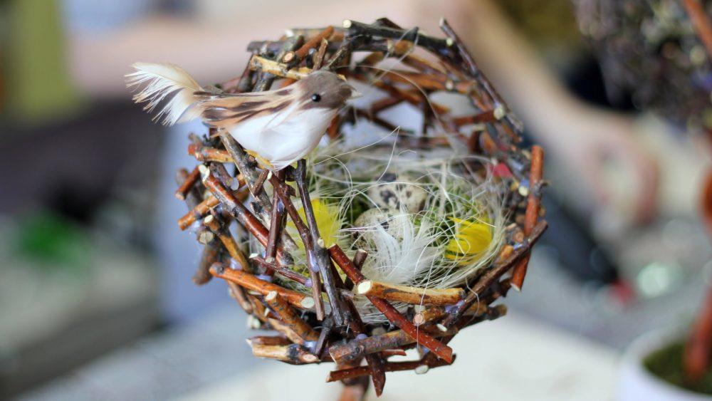 Топиарий в виде гнезда