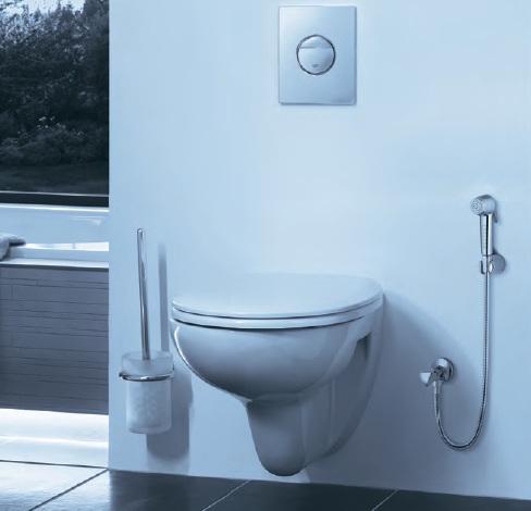 Дизайнерские унитаз и гигиенический душ