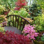 Фото 56: Ландшафтный дизайн сада с мостиком