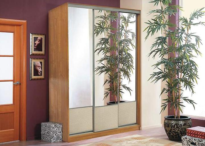 Растение в кадке перед зеркалом против двери