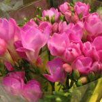 Фото 75: Букет из розовых фрезий