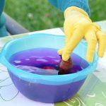 Фото 62: Обеззараживание луковиц марганцовки