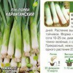 Фото 24: Семена карантанского лука - порея