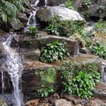 Фото 21: Спатифиллум у водопада