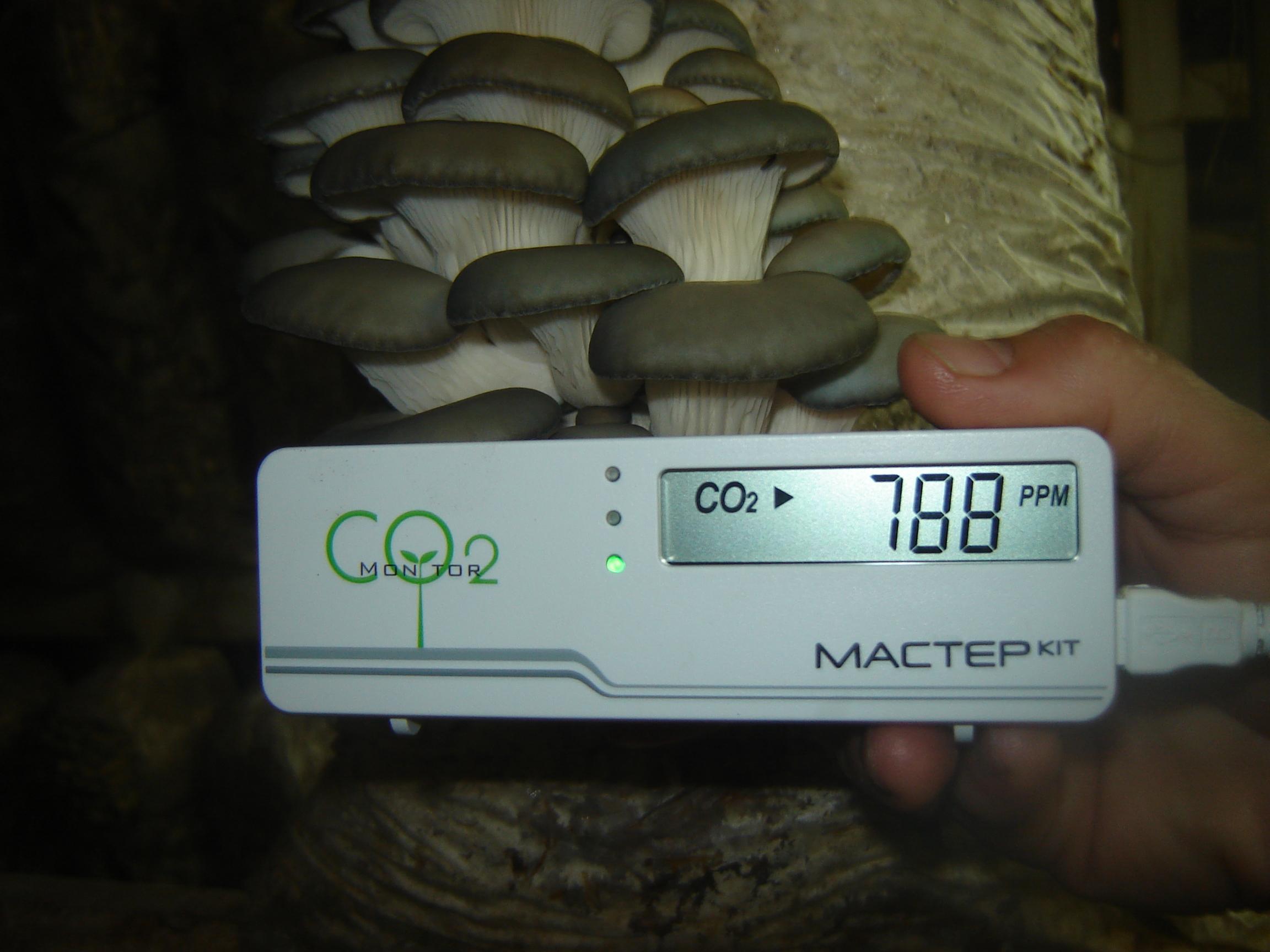 Высокая влажность воздуха и углекислого газа для выращивания грибов
