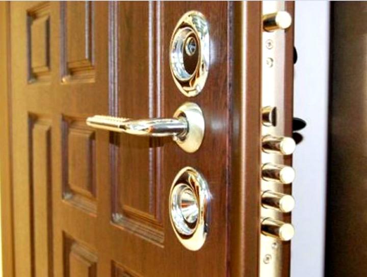 vhodnaya-dver-kak-chast-interera-3