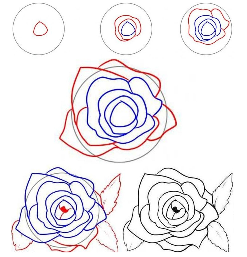 Рисование бутона розы сверху