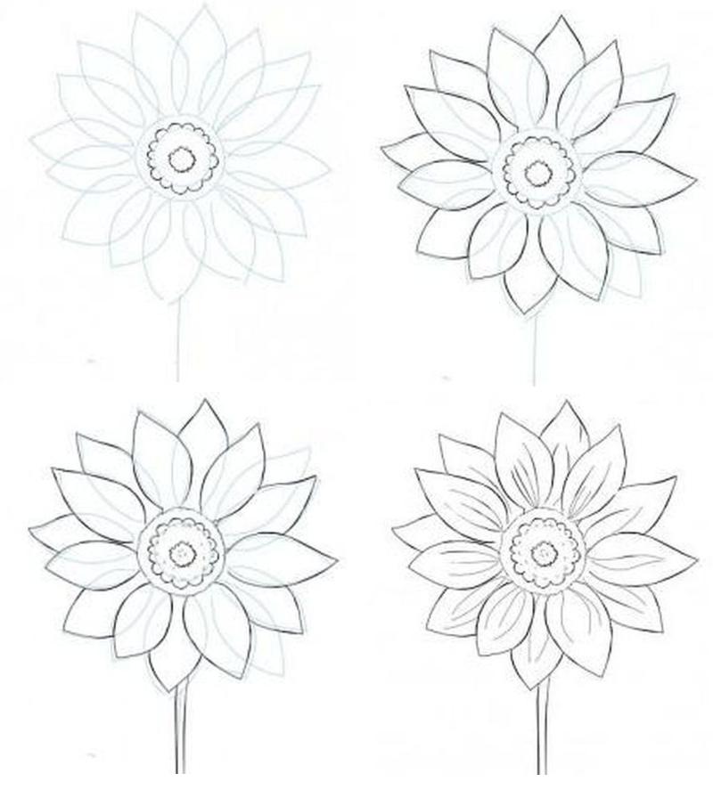 Прориосвывание четких контуров цветка
