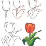 Фото 79: Рисование тюльпана