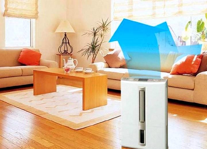 Осушитель воздуха для квартиры2