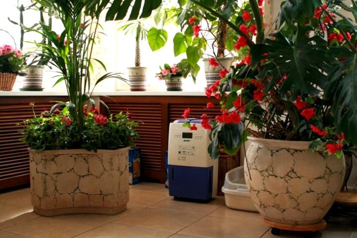 Осушитель воздуха для квартиры3