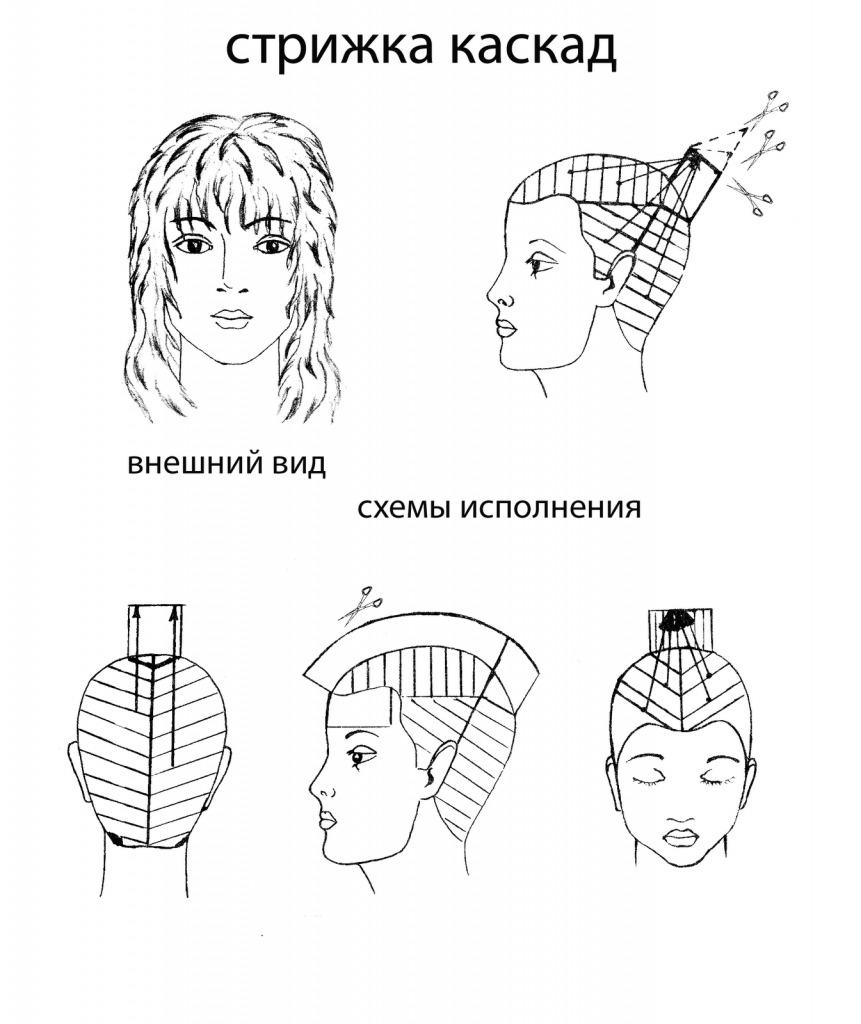 Схемы стрижек волос в картинках