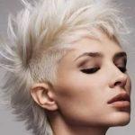 Фото 93: ирокез на светлых волосах