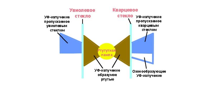 Схема упрощенного устройства кварцевой лампы