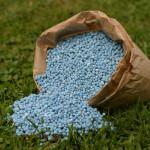 Фото 22: Минеральные удобрения для актинидии