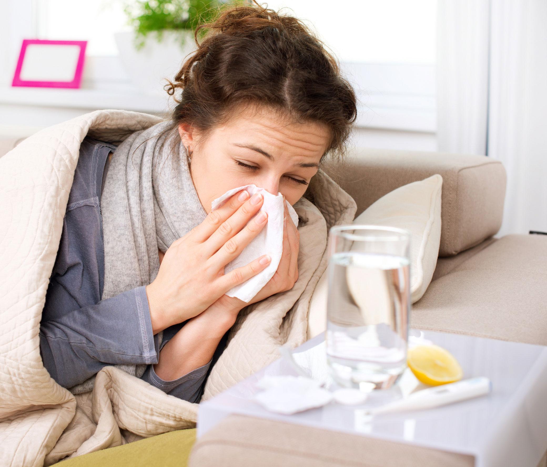 Настойка эхинацеи при простудных заболеваниях