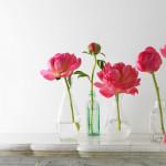 Фото 17: Пионы в вазах