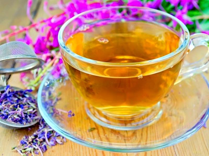 Чай с кипреем