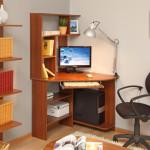 Фото 12: Комната с компьютерным столом
