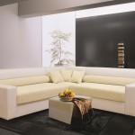 Фото 21: Кожаное сочетание дивана