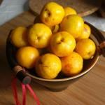 Фото 12: Плоды японской айвы