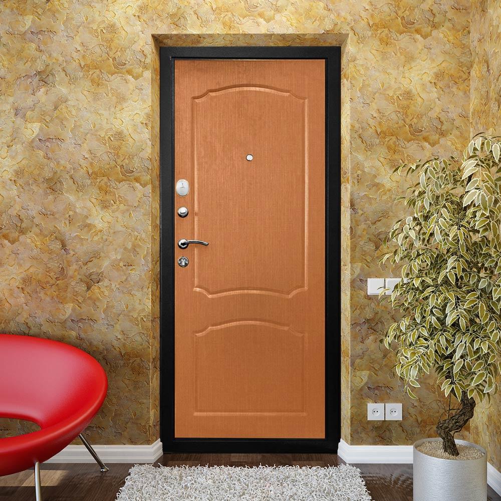 Железная дверь в квартире