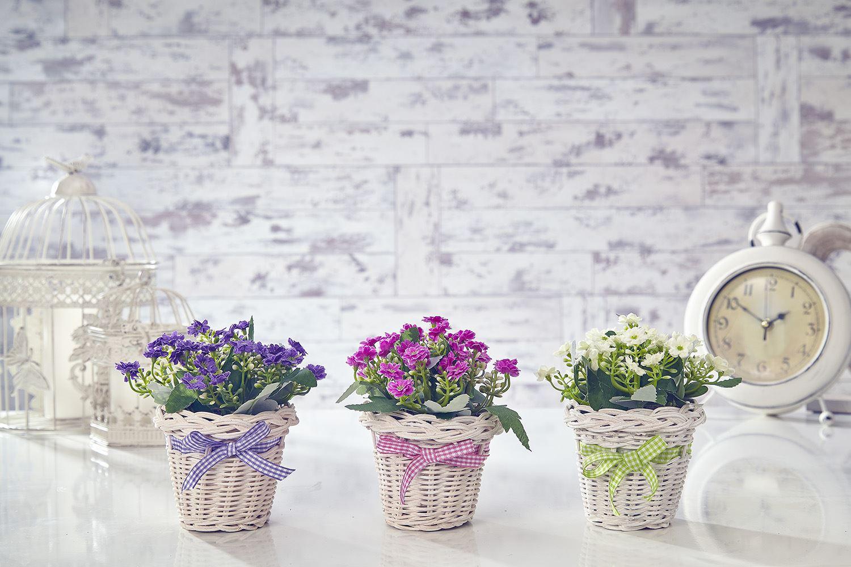 Цветы из фоамирана будут радовать круглый год