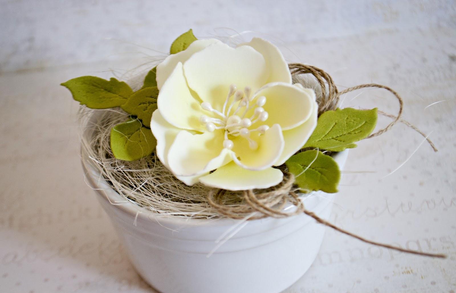 Кашпо с нежным цветком