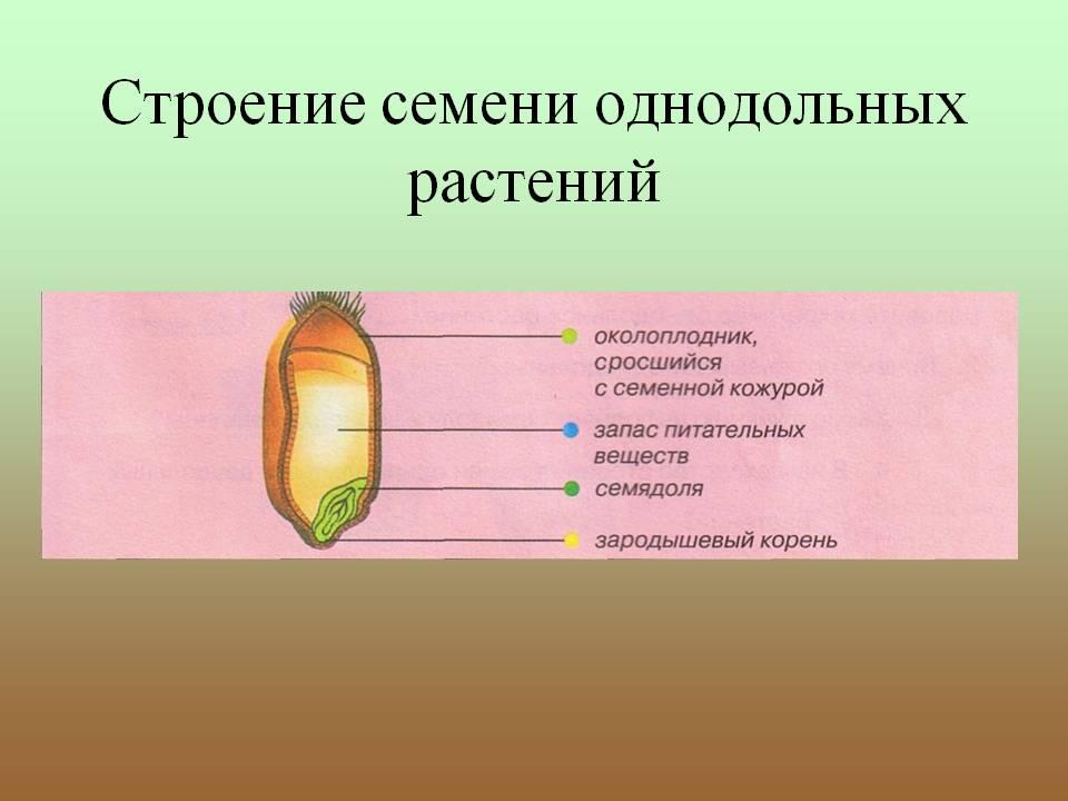 Фото 3: