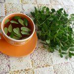 Фото 39: Чай из листьев брусники