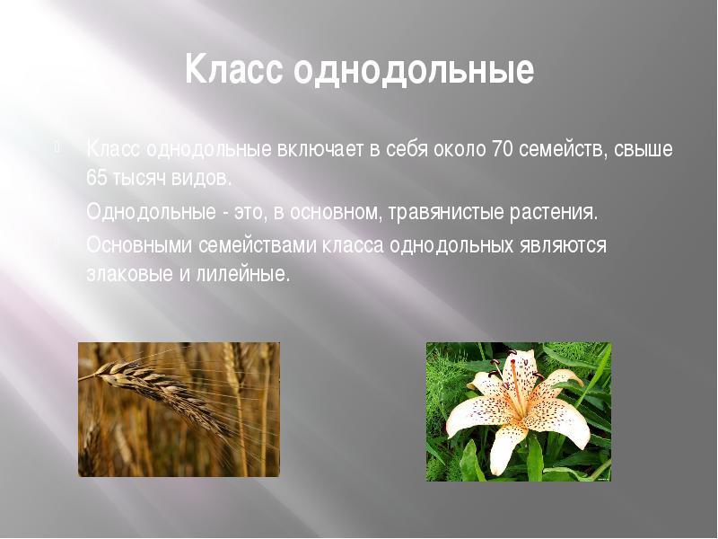 Фото 14: