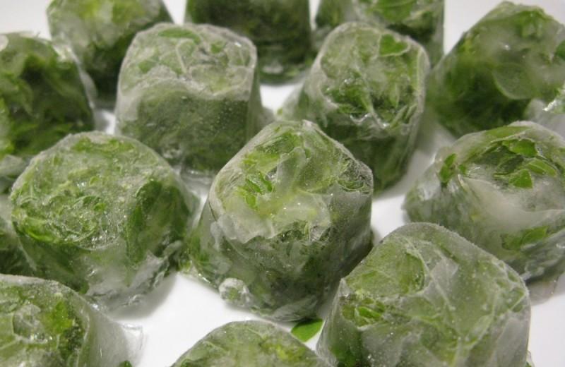 Фото 31: Заморозка зелени