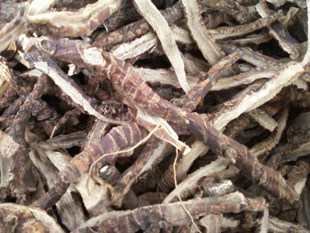 Использование корня аира