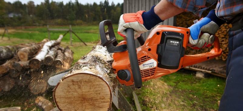 Фото 12: Заготовка дров с помощью бензопилы