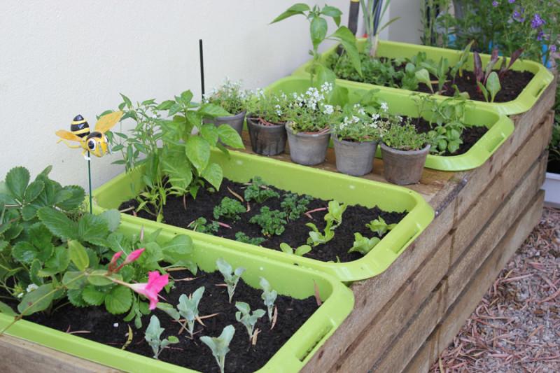 Фото 29: пластиковые контейнеры для растений