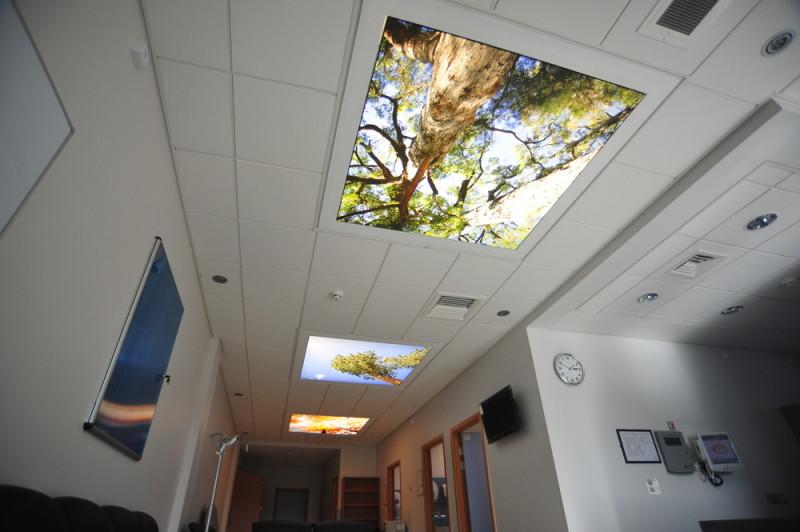 Фото 32: Натяжные фотовставки на потолок