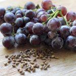 Фото 33: Семена винограда