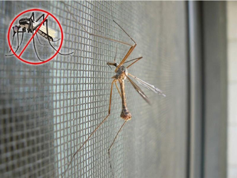 Фото 21: Москитная сетка от насекомых