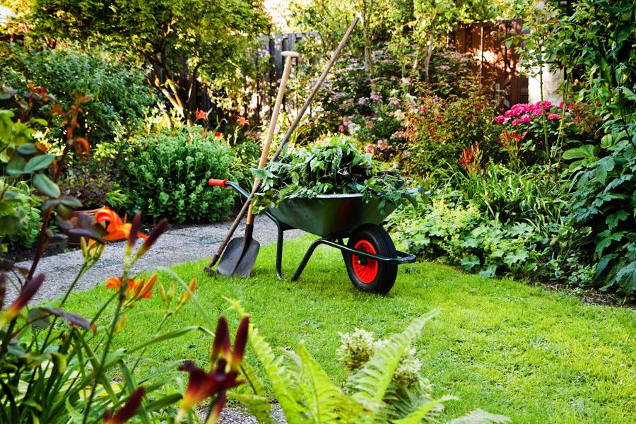 Фото 3: Уход за садом