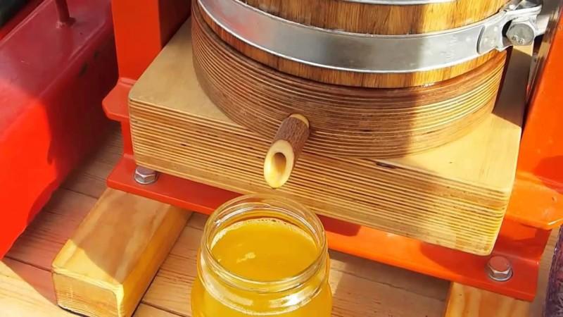 Фото 23: получение кедрового масла