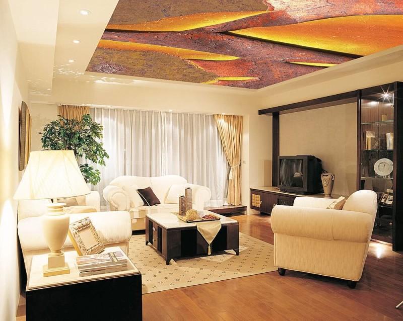 Фото 20: Натяжной потолок под картинку маслом