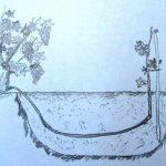 Фото 35: Размножение винограда воздушными отводками