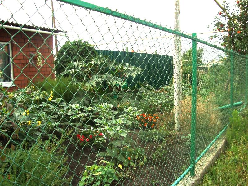 Забор с ПВХ-покрытием